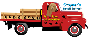 All Paws Stay-n-Play